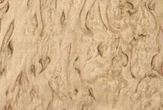 береза карельская