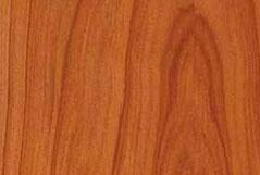 секвойя (мамонтовое дерево)
