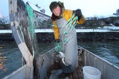 Josef Muggli auf Laichfischfang