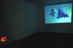 instalation view of ' a lie before breakfast' and 'silent movie' in popotme