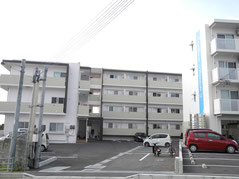 琉球神人 霊視鑑定 天空サロン