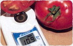 完熟した高糖度トマト