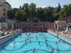 Budapest Special: 48 hours