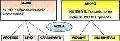 Macronutrienti e fibra nella dieta mediterranea