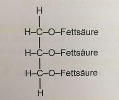 Chemische Struktur von Fett