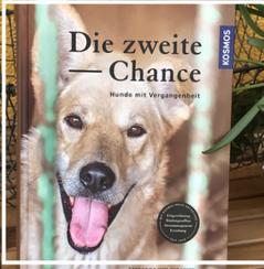 Buch Die zweite Chance. Katharina von der Leyen. Bild Buchcover