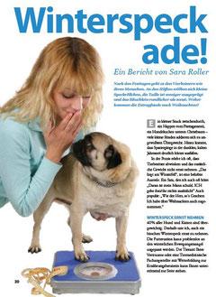 Artikel Tierarztmagazin dicke Hunde