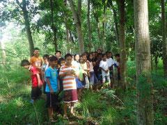 森の中で動植物を見つけて楽しむ子どもたち