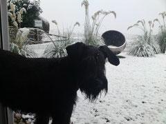 S'erscht Mal Schnee.. juhuu