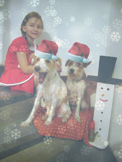 Wir wünschen euch frohe Weihnachten! :-)