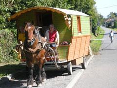Roulotte de location et cheval