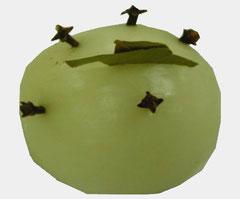 Gespickter Zwiebel