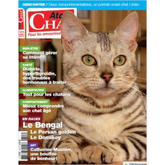 atout chat osiris bengal chat