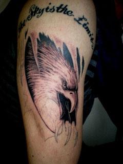 鷲、イーグル