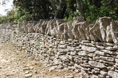 石灰質の石垣