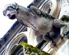 Gargouille de l'église de Fontaine-sur-Somme- Ph: Etienne Bellette