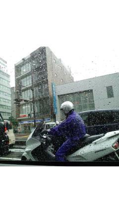 雨にも負けず