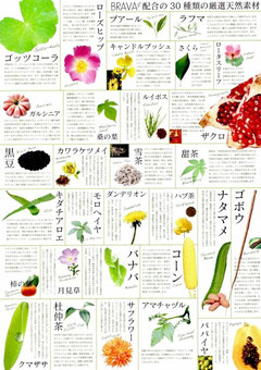 BRAVAの30種類の天然素材
