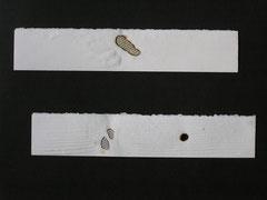 Zeitstamp, Abdruck 40 x 55 cm