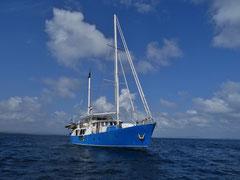 Segeltrip von Panama nach Kolumbien mit der Independence