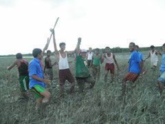 Mangrove reforestation with Japanese friends