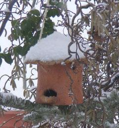 Vogelhaus Futtersilo Keramik  frostfest gebrannt