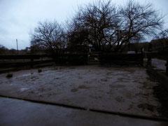 Im alten Sandpaddock steht nur in einer Ecke eine etwas größere Pfütze