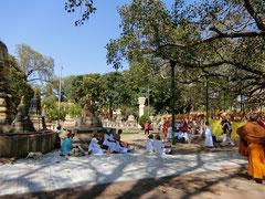 ブッダガヤー菩提樹下に集う四衆