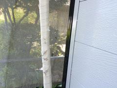 エアコン室外配管