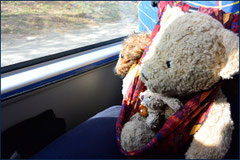 Kasimir, Cäsar und Fredi im Reisebus auf Kuba