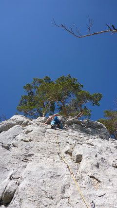 Olli in der Route Roulette (5b+)