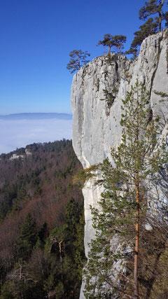 Wunderschöne Jura-Kalkwände.