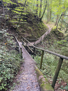 Willkommene Wanderabschnitte durch den Wald.