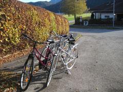 Unser Fahrradpark.....