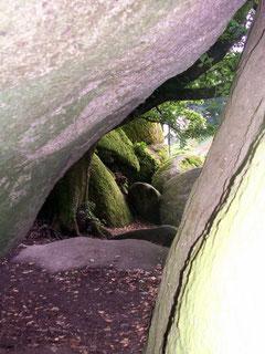 Forêt d'Huelgoat (29)