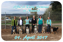 Rally Seminar in Neuwied April 2017