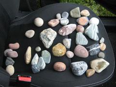 Aussortieren der gesammelten Steine