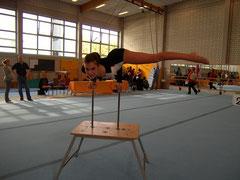 Landesmeisterschaften Rostock 2010