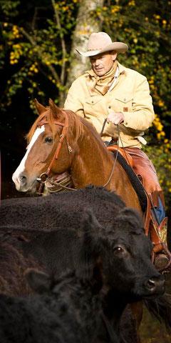 RossFoto Dana Krimmling Pferdefotografie Fotografien vom Wanderreiten Westernreiten Westernladen Gerhard Kissel Dahn Pfalz