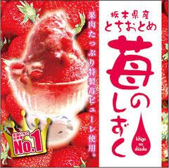 苺のしずく, FNIかき氷, 日比谷大江戸まつり