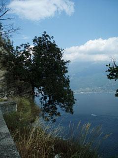 Blick auf das östl. Ufer des Gardasees