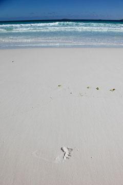 Linas hinterlässt Spuren am Hellfire Beach...