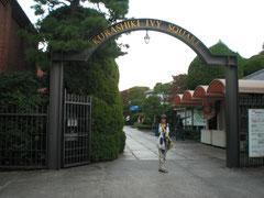 IVY SQUARE 入り口
