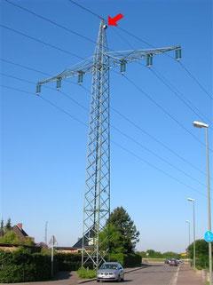 Strommast im Krückenkrug in Einfeld - mit Turmfalkenkasten an der Spitze