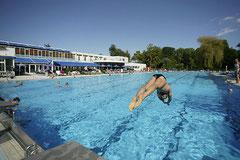 50m Sportbecken der Parktherme Bad Radkersburg