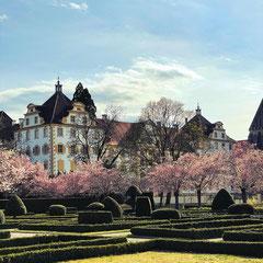 Das Kloster und Schloss in Salem am Bodensee ist von innen und aussen definitiv einen Besuch wert.