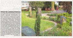 Wetterauer Zeitung vom  18. Juni 2010