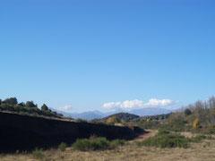 Вулканы, лес Фажеда ден Джорда, вулканическая зона Гарротха, гид в Олоте