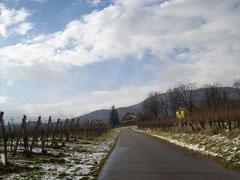 путешествие по Германии, экскурсии по Каталонии