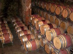 гид на юге Франции, французские погреба, экскурсия в погреба, французские вина